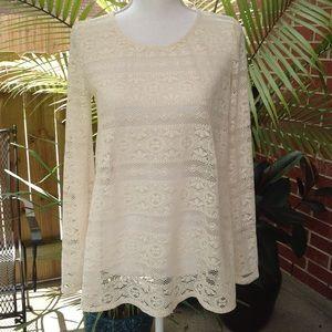 NWOT Bellezza white lace top blouse medium cotton